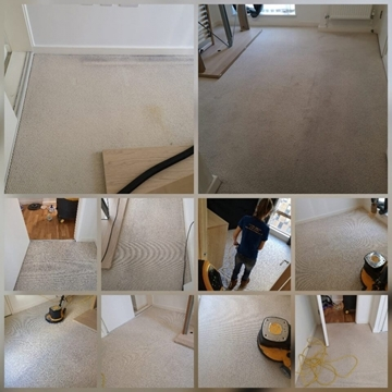 Affordable Carpet Cleaning In Reading
