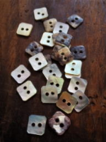 18 Ligne Square Agoya Shell Buttons