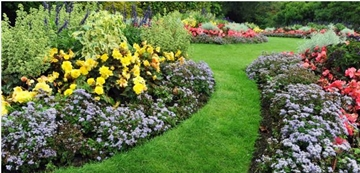 Landscaping Services For Fencing