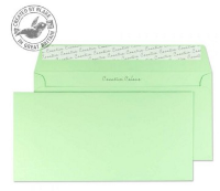25217 Blake Creative Colour Spearmint Green Peel & Seal Wallet 114X229mm 120Gm2 Pack 25 Code 25217 3P- 25217