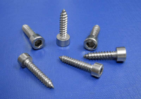 Socket Cap Head Self Tapping Screws Head To DIN912 4.8mm up to 6.3mm L9052 A2