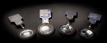 RAUS Sanitary Disk For Petrochemical Industries