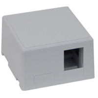 100-021 Excel 1 & 2 Port Keystone Surface Mount Box