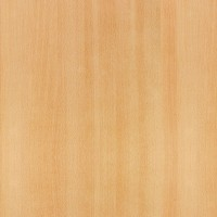 600Mm X 600Mm Light Beech Werzalit Square Table Top