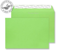 307 Blake Creative Colour Lime Green Peel & Seal Wallet 162X229mm 120Gm2 Pack 500 Code 307 3P- 307