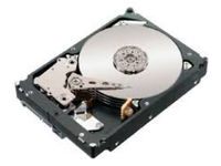 IBM 750GB/7.2K SATA II **Refurbished** 43W9720-RFB - eet01
