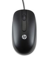 Hp Hp Ps/2 2-button Optical Mouse Black - 2013 Design Qy775aa - xep01
