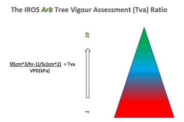 Tree Health And Vigour Assessments In The North West
