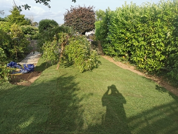 Soft Landscaping Services In Plymouth