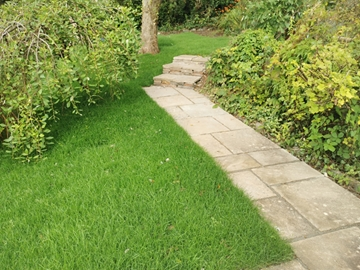 Soft Landscaping Services In Ivybridge