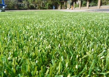 Extremely Durable Synthetic Grass