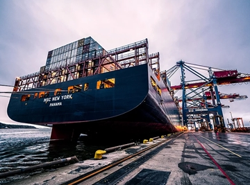 Sea Freight Services Forwarding From Europe