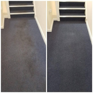 Carpet and Floor Cleaning in Offices