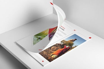 Professionally Designed Printed Brochures