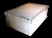 Bacti Growth Plates In Wrexham Suppliers