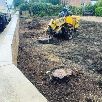 Stump Grinding Services Lincolnshire