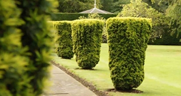 Commercial Grounds Maintenance Services Manchester