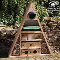 Pyramid Insect Hotel