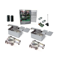 CAME Frog AE-P 24 Kit with Stainless Steel Foundation Boxes & A4366 Keyed Locks