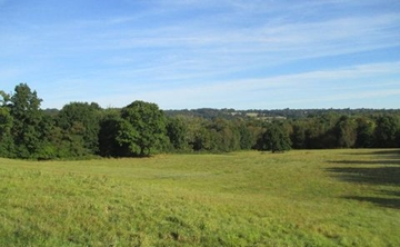Experienced Ecologists In Kent