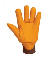 Suppliers of Thermal Gloves