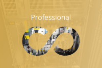 Professional Service Package