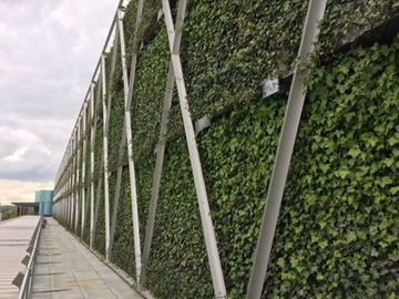Installers Of Living Green Walls
