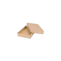 A4 Mailing or Archive Box with Lid 305x215x100mm x 10