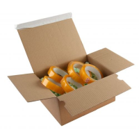 A4 One Touch Postal Boxes 310x230x110mm pack of 20
