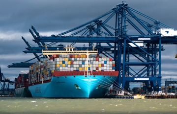 Highly Competitive Sea Freight Services