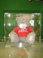 Teddy Display Cover