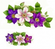 Clematis Spray Ceramic Transfers