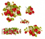 Strawberry Design Ceramic Transfers