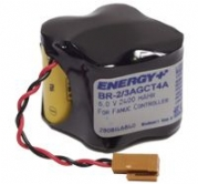 Fanuc Batteries Services