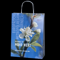 Custom Printed Twisted Handle Paper Bags