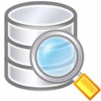 Full database search facility