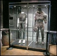 Double Costume Display Cabinets