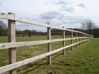 Fence and Gate Posts