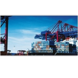 Large Consignment Sea Freight Services