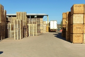 Full Pallet Repair and Recycling Service