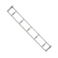 Inspection Ladders - angled