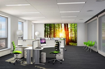 Office Interior Tensioned Fabric Display Systems