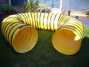 Agility/Play Tunnel Manufacturer