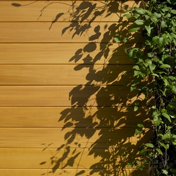 Western Red Cedar Clear Vertical Grain TGV Cladding