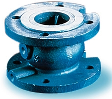 Single Check Valve Flanges