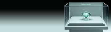 Bespoke Display Cases in Hampshire