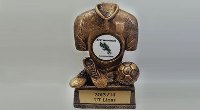 Custom Shield Trophy Engraving Services
