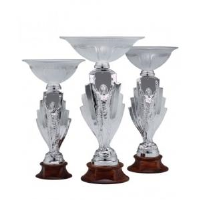Figurine Glass Cup Awards In Sunderland