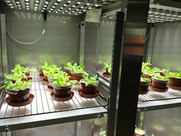 Plant growth chambers & Controlled environment rooms