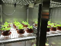 Aralab Bio Plant Growth Chambers & Controlled Environment Rooms